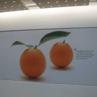 oranges-rcp-acm-panel1